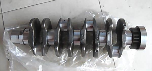 05072267/1 Crankshaft
