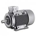 REM.1LGE288-6AA-94-Y DE Elektromotor 75kW (Replace 1LGE288-6AA-94-Y Elektromotor 75kW)