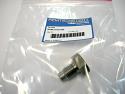 REMCU30.406 DE Hex. Bolt (Replace Plasser CU30.406)